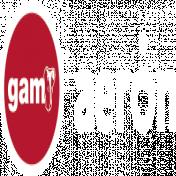 logotipo de GAMRENTALS